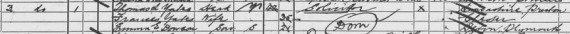 Extract of the 1891 Census for Lambeth, London