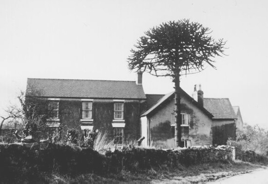 Killins Farm in 1950