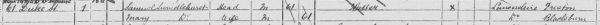 1891 Census Extract from Barrow in Furness